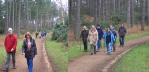 A group walk
