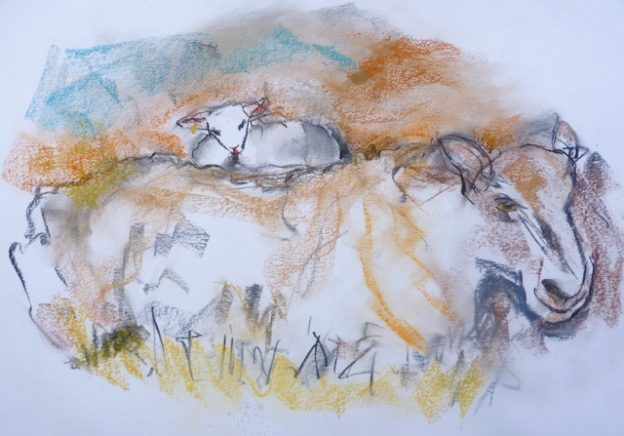 Sketch by West Norfolk Artist Helen Breach